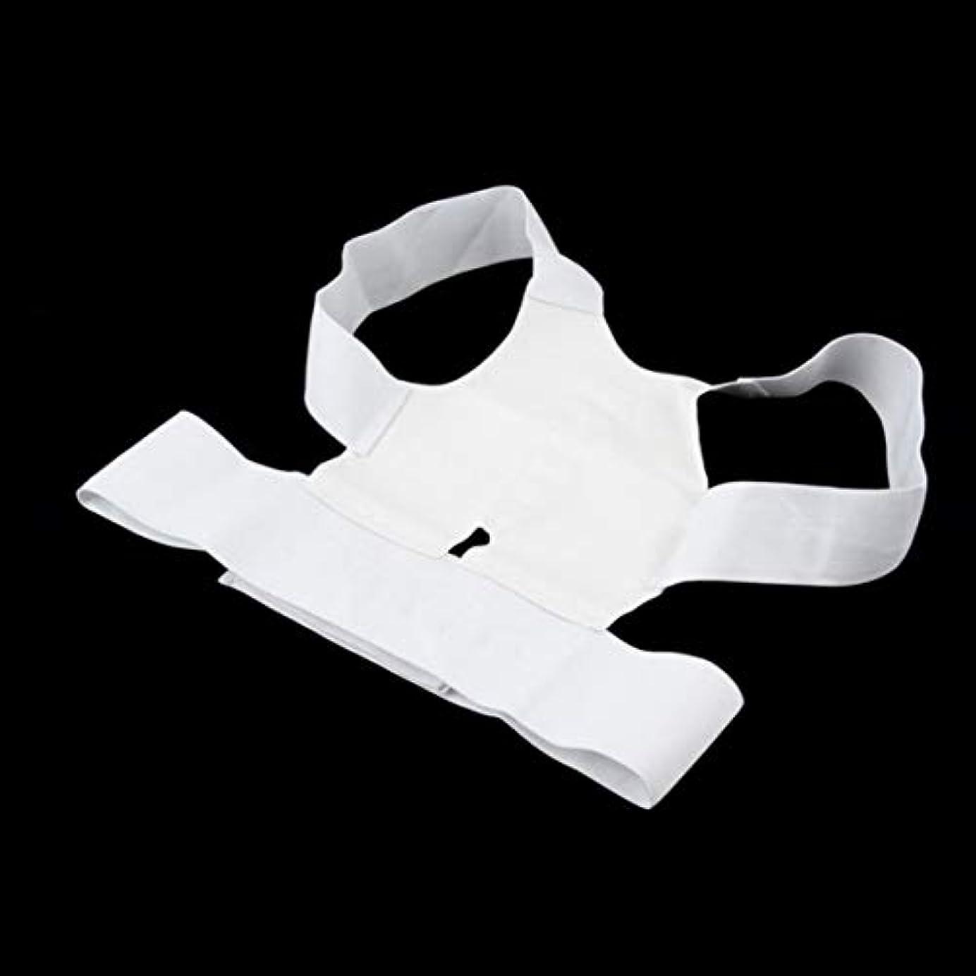 旧正月予定爵白快適磁気姿勢サポートコレクター腰痛ベルトブレース肩の痛みから病気 - 白