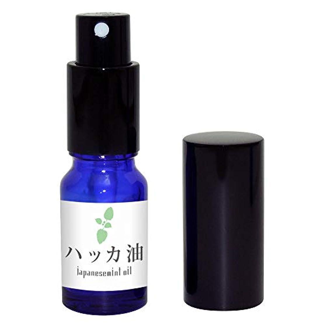 ヒゲ投資するオデュッセウスガレージゼロ ハッカ油 (スプレー瓶入10ml)
