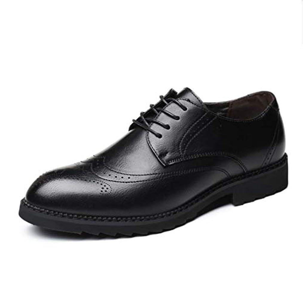 ネコ分注するなんでもギフト専門 シューズ 紳士靴   ビジネスシューズ オックスフォードシューズ 靴  ギフト プレゼント  メンズ  26cm ブラック  0533