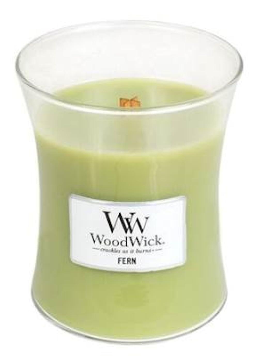 戦い意見パイプFern WoodWick 10 oz Medium砂時計Jar Candle Burns 100時間