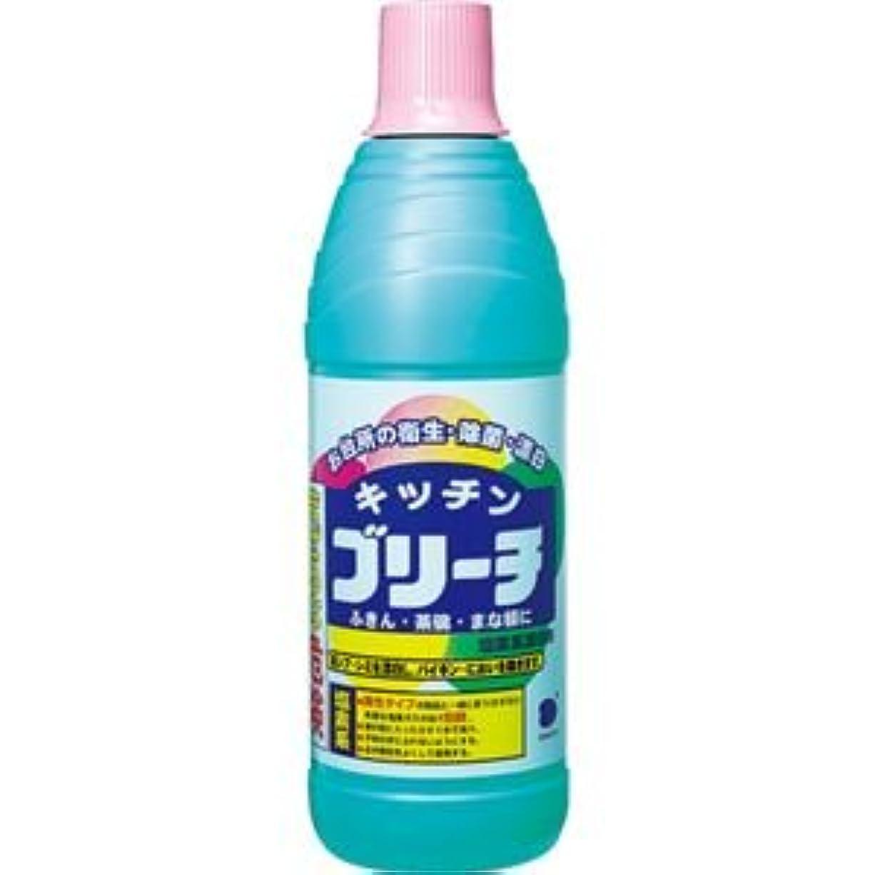 気性エラー草(まとめ) 第一石鹸 キッチンブリーチ 600ml 1本 【×40セット】