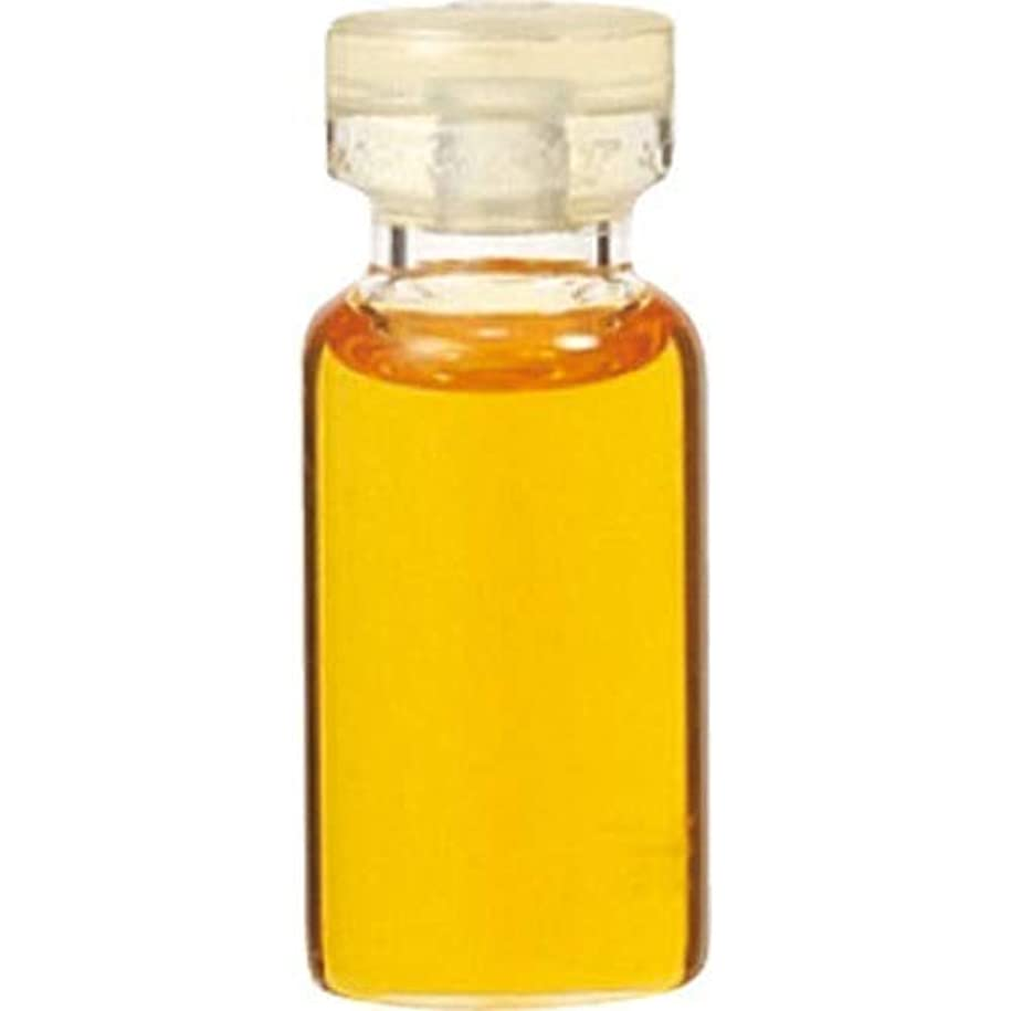 ビーム誘ううなずくエッセンシャルオイル パチュリ(3mL) 癒し用品 アロマオイル?精油 エッセンシャルオイル [並行輸入品] k1-4954753032909-ak