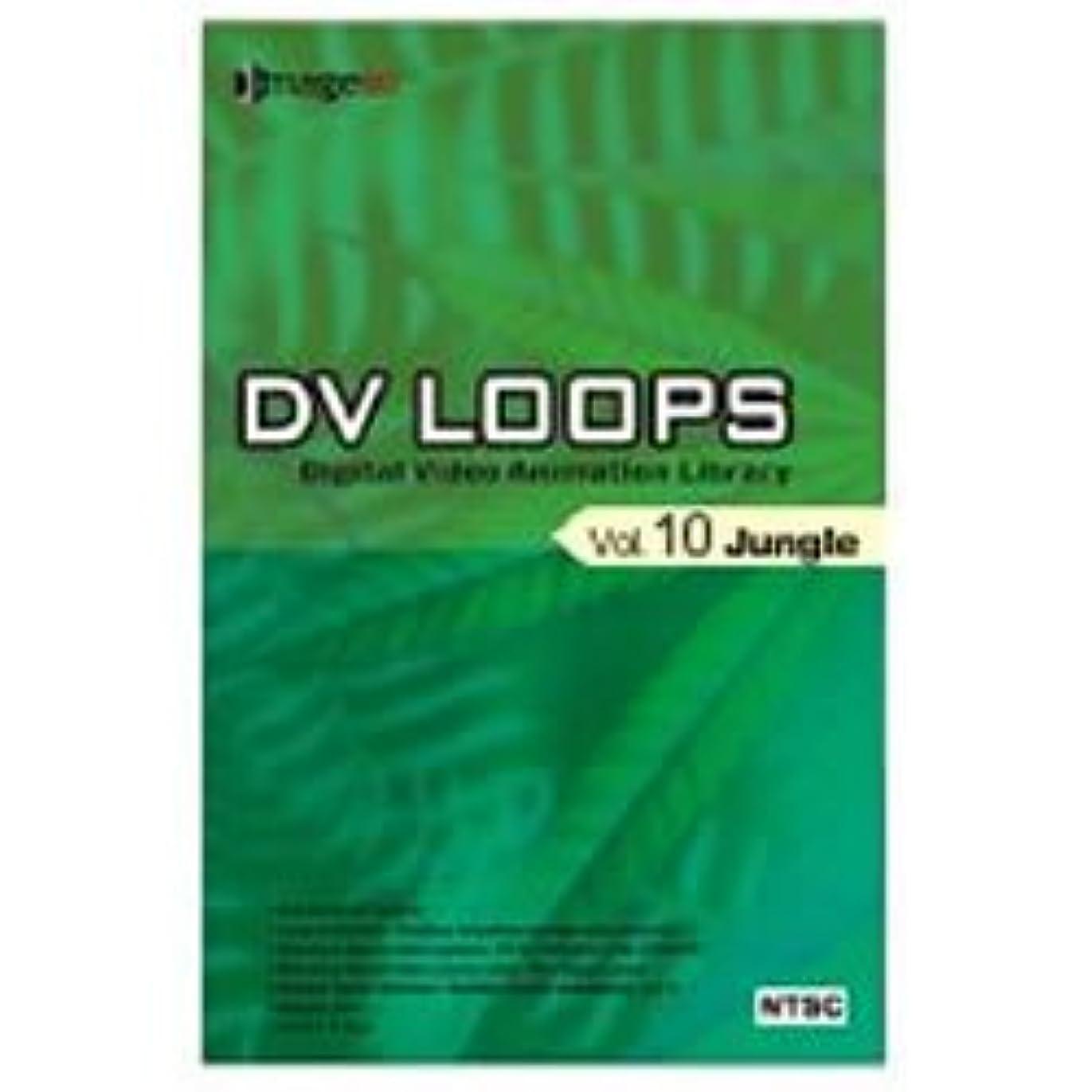 経験的リボン呪われたDV LOOPS Vol.10 ジャングル