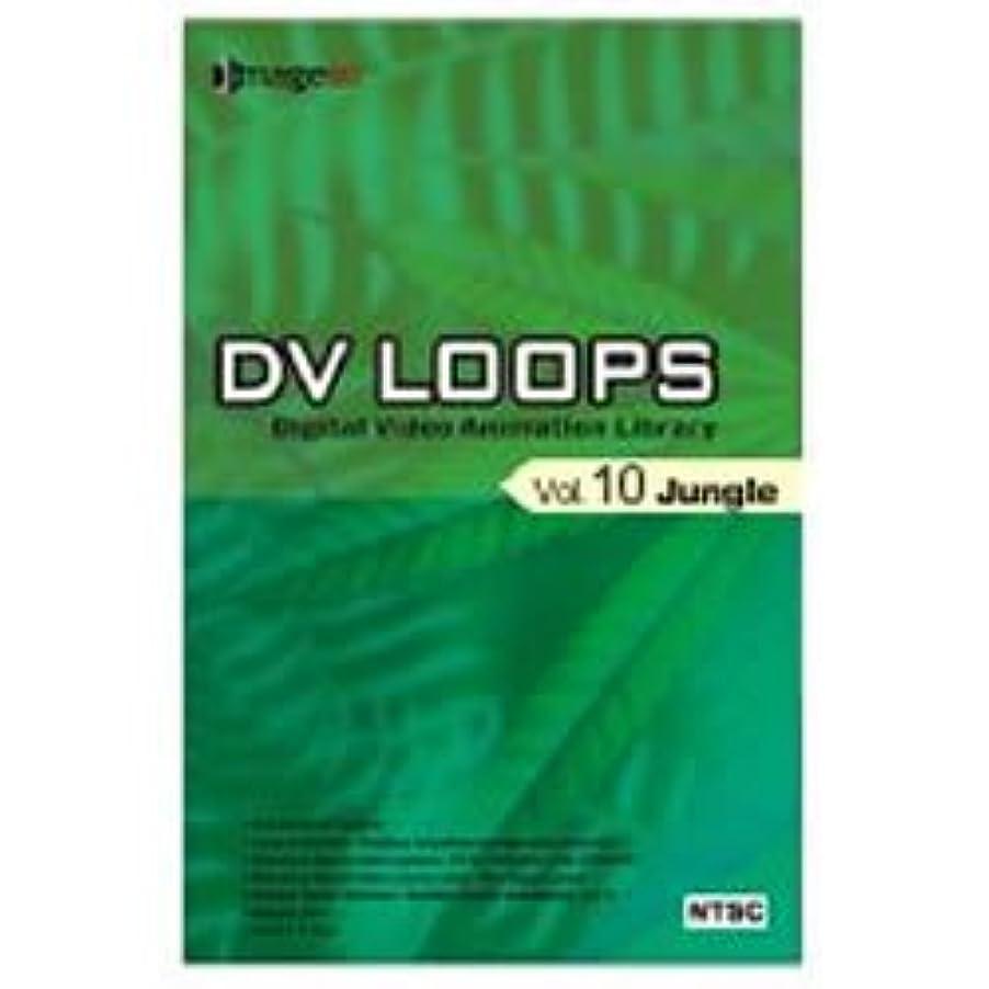 不良リール部分DV LOOPS Vol.10 ジャングル