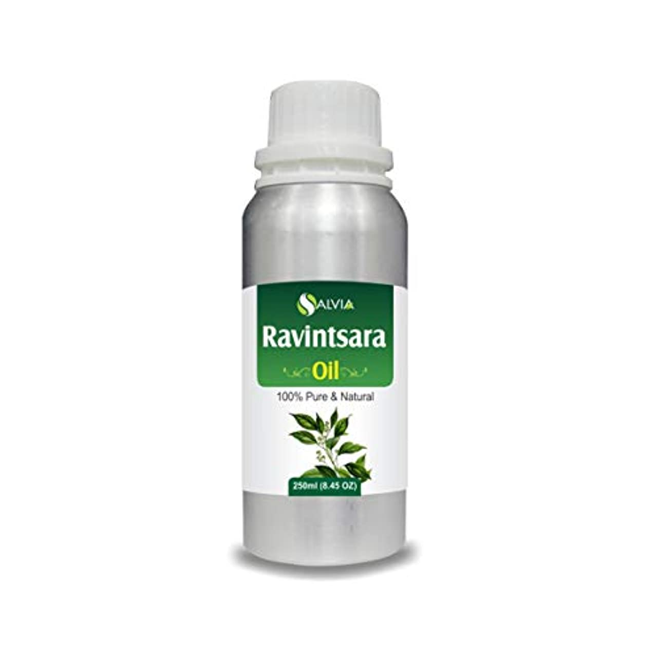 夢中熱狂的な恐ろしいRavintsara Oil (Cinnamomum camphora) 100% Natural Pure Undiluted Uncut Essential Oil 250ml