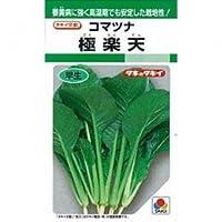 小松菜 種 極楽天 2dl