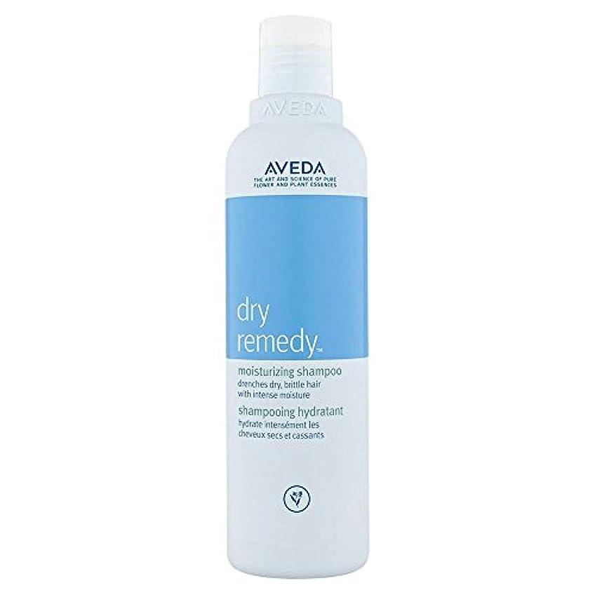 明るい明るい適合する[AVEDA] アヴェダドライ救済保湿シャンプー250Ml - Aveda Dry Remedy Moisturizing Shampoo 250ml [並行輸入品]