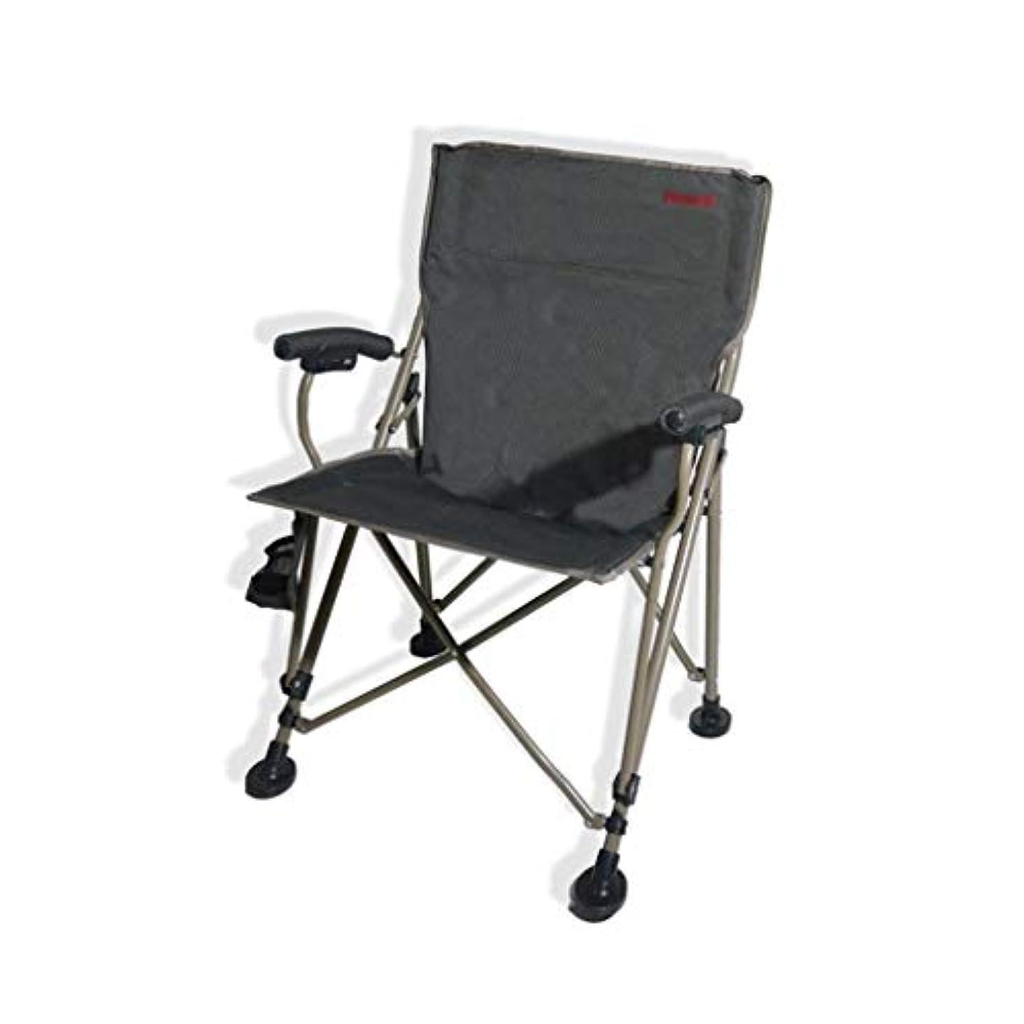 朝の体操をする異常なプロジェクター屋外の椅子、椅子を格納すること容易な灰色の厚い折る椅子の携帯用椅子屋外の椅子釣椅子 (色 : グレイ ぐれい)