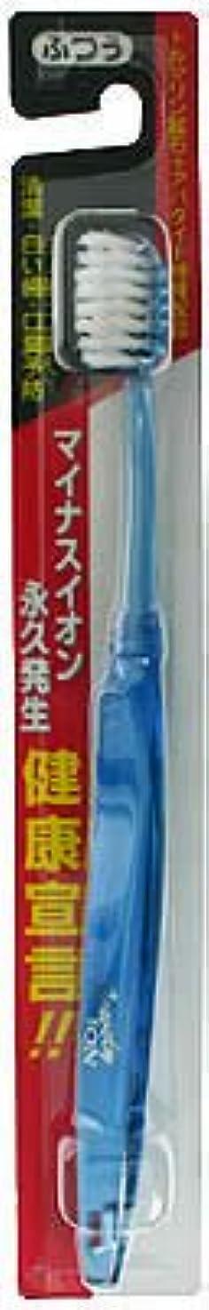 漏れ何故なの電化するマイナスイオン 健康宣言 歯ブラシ ふつう