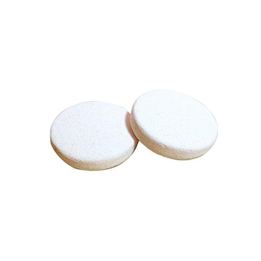 悪性腫瘍しないネーピア〔立風屋〕珪藻土アロマプレート 2枚セット(取り換え用) RPAP-01004-02 [メール便可]