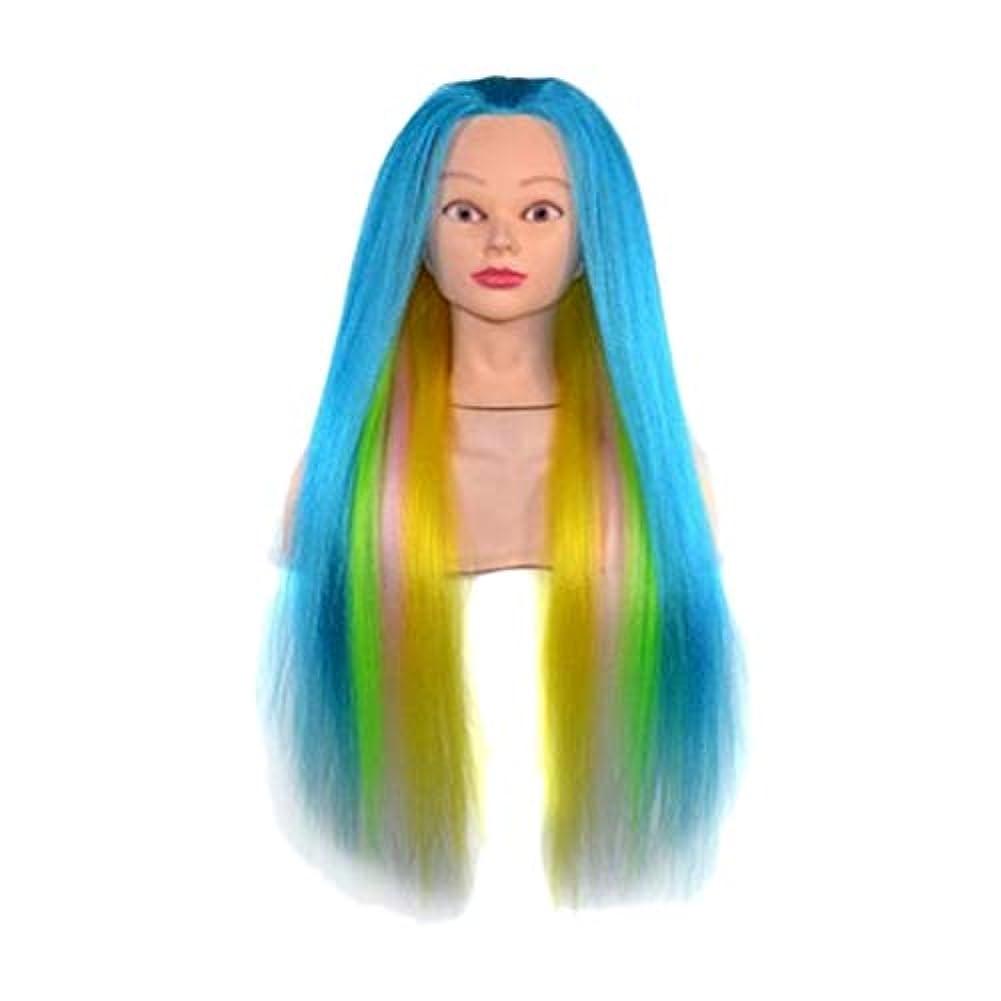 バレエスキニー流用するDYNWAVE マネキンヘッド ウィッグ 23インチ 理髪 着色 ディスプレイ トレーニング 練習 全8選択 - 07