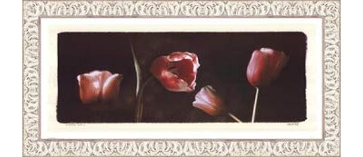 子供達もコンバーチブルIlluminating Tulips I by Judy Mandolf – 21 x 9インチ – アートプリントポスター LE_40524-F9711-21x9