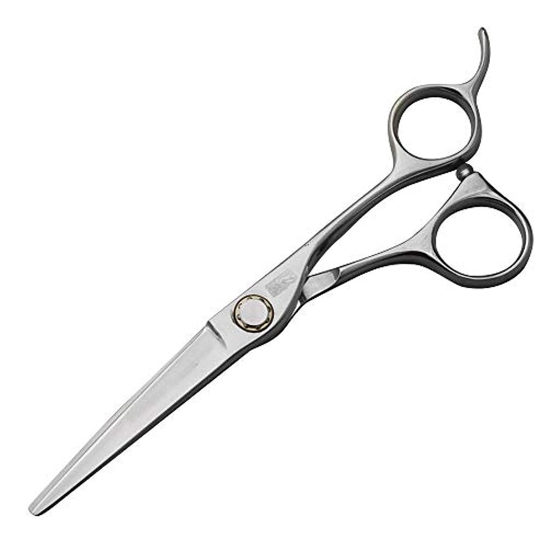 パーフェルビッド助けになる作り理髪用はさみ 440Cハイグレードステンレススチール理髪はさみ、スタイリスト特別なフラットはさみ+歯はさみヘアカットはさみステンレス理髪はさみ (色 : Silver)