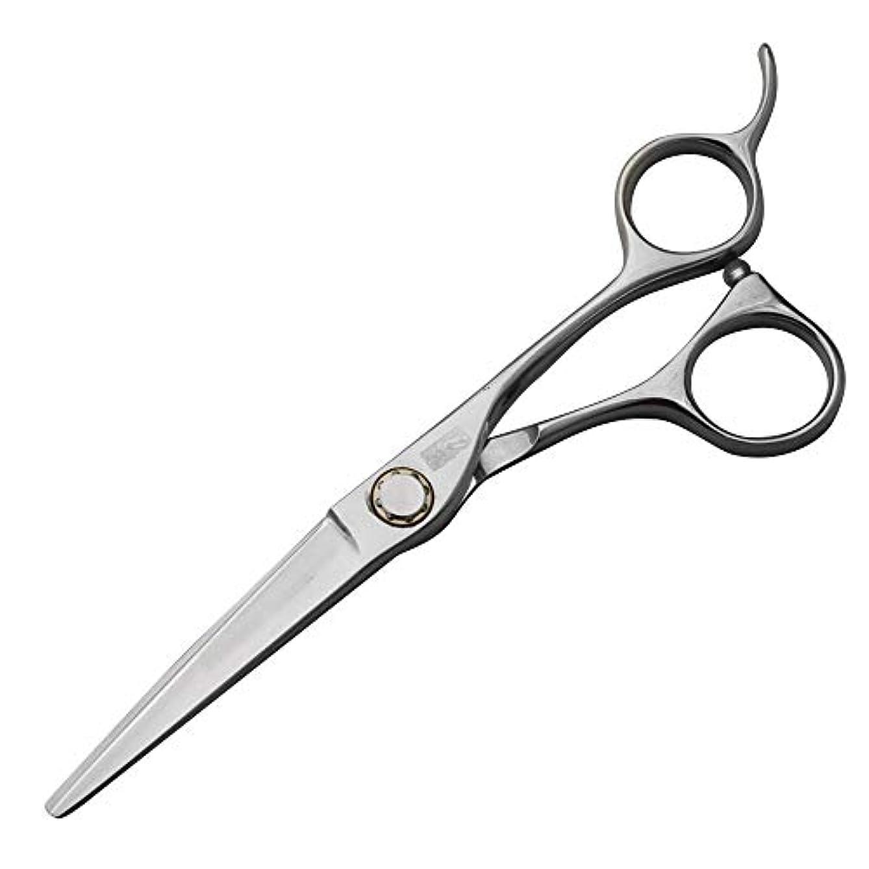 わざわざエレガント弾力性のある440C高級ステンレス鋼理髪はさみ、スタイリスト特別な平らなはさみ+歯はさみセット ヘアケア (色 : Silver)
