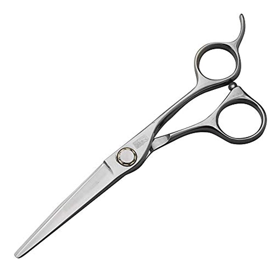 狂う気付く排出440C高級ステンレス鋼理髪はさみ、スタイリスト特別な平らなはさみ+歯はさみセット モデリングツール (色 : Silver)