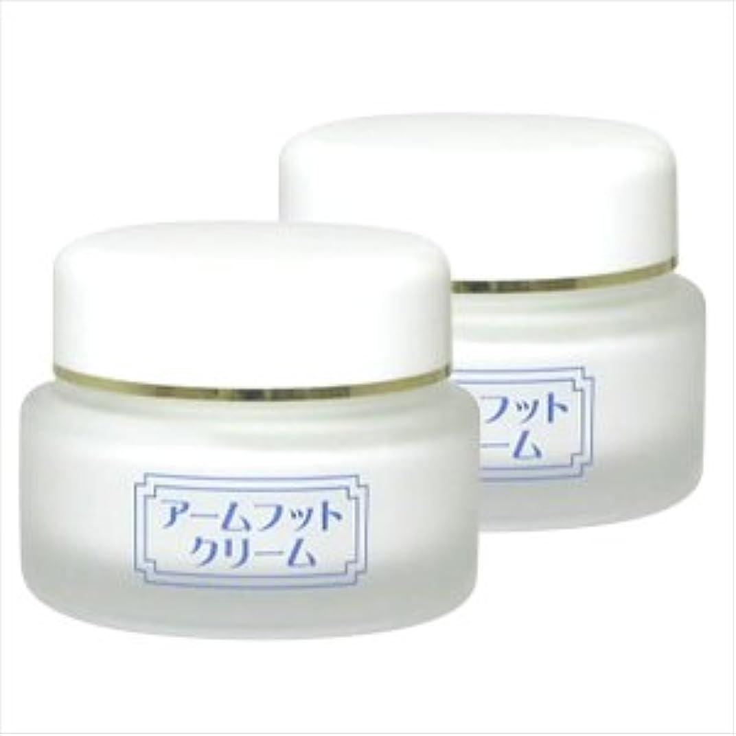 夜明け薄める手数料薬用デオドラントクリーム アームフットクリーム(20g) (2個セット)
