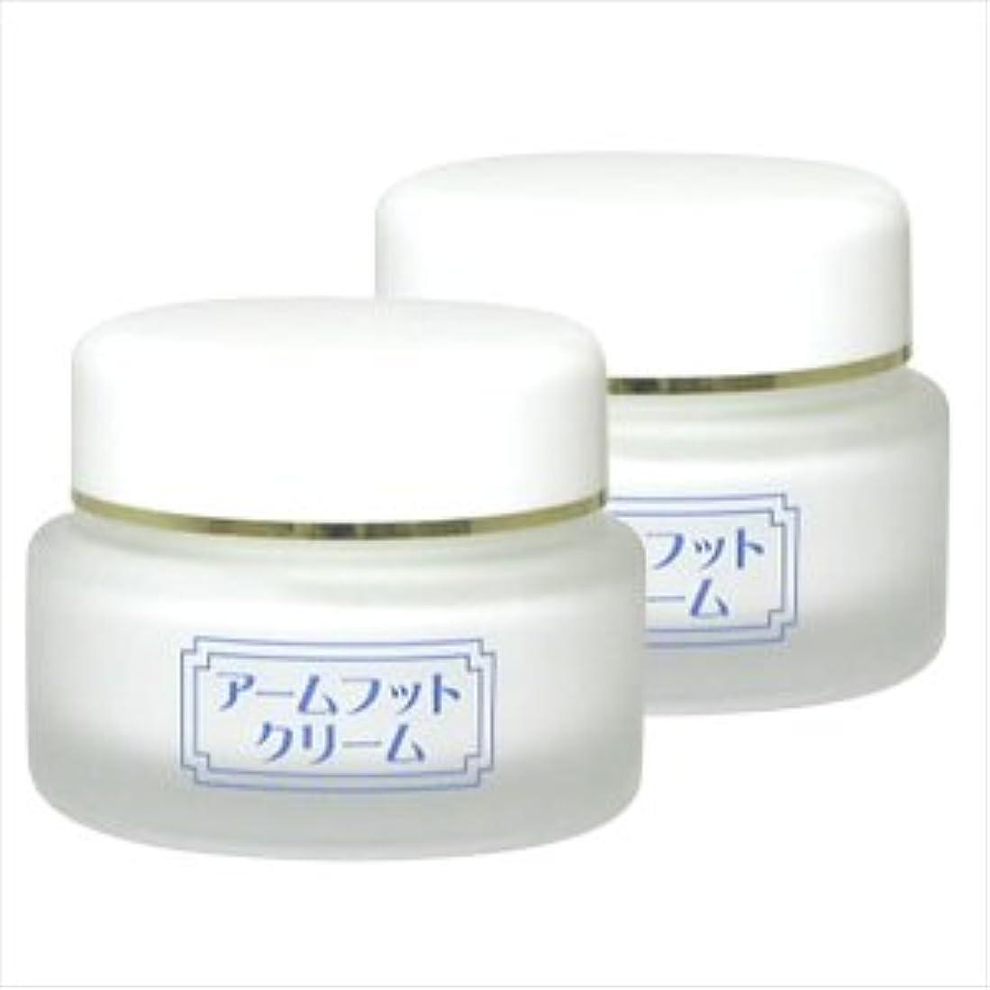 ガイド好意ジャンク薬用デオドラントクリーム アームフットクリーム(20g) (2個セット)