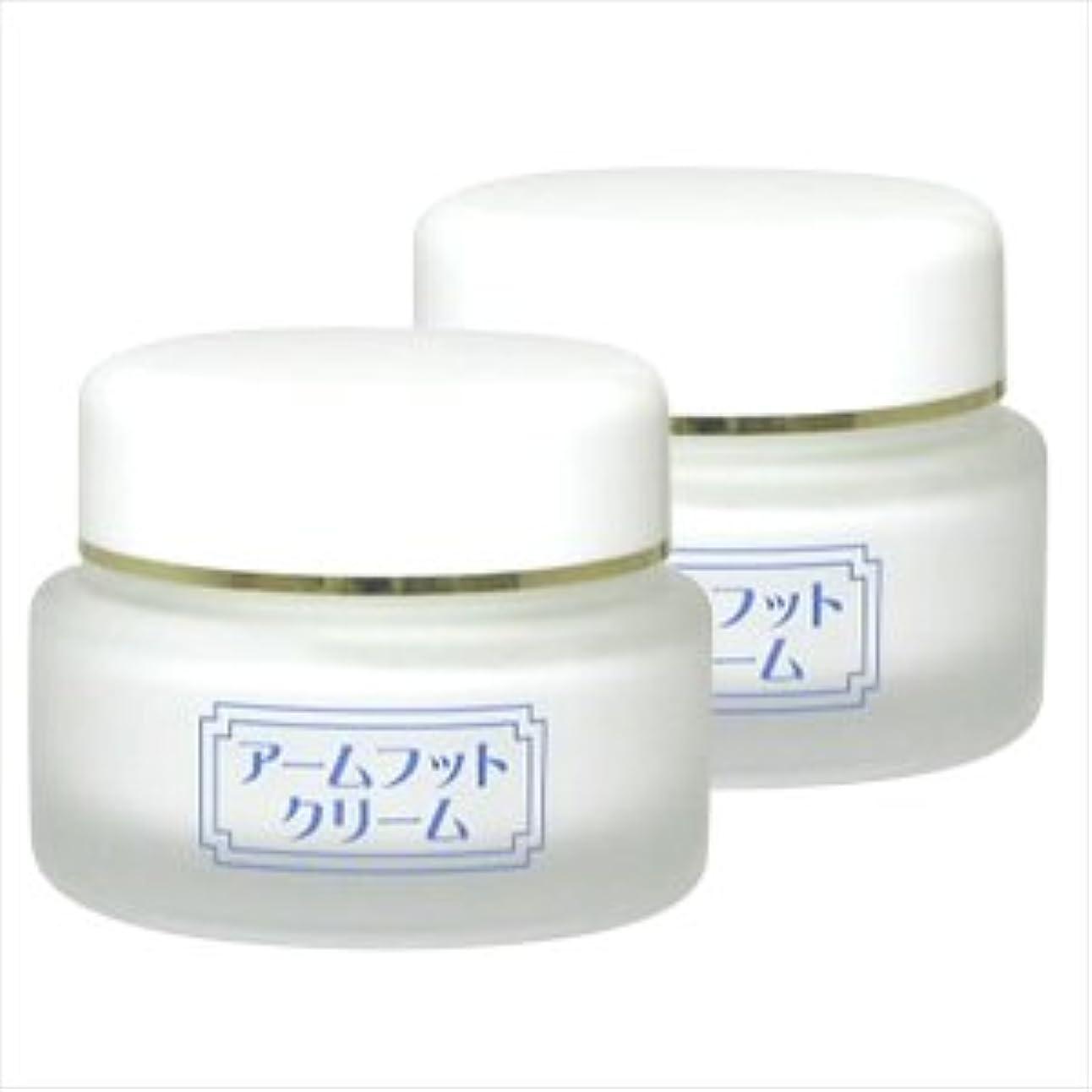 グリース検証広く薬用デオドラントクリーム アームフットクリーム(20g) (2個セット)