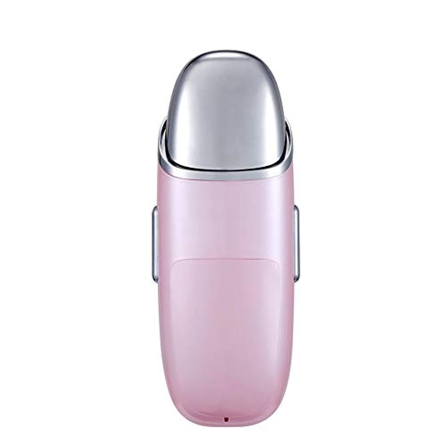 識字ブロックする分散ナノフェイシャル、充電式フェイシャルスチーマー10 ml水タンク、ポータブルフェイシャルスプレー、スキンケア、旅行保湿および保湿 (Color : Pink)