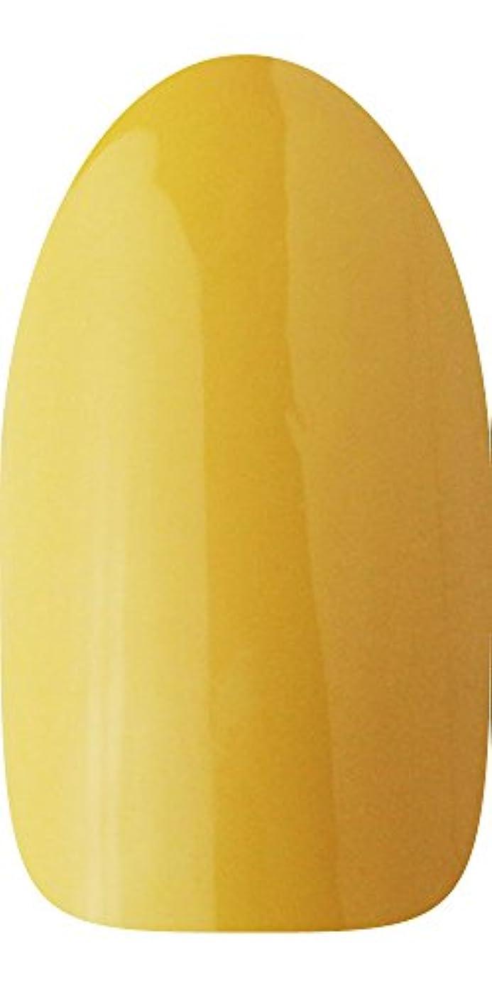レタス粘液ジュースsacra カラージェル No.172 たくあん