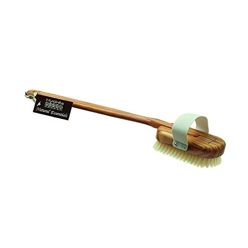 中央値落とし穴推進力Hydrea London Olive Wood Pure Bristle Bath Brush, Medium/Hard Strength (Pack of 6) - ハイドレアロンドンオリーブの木の純粋な毛風呂ブラシ...