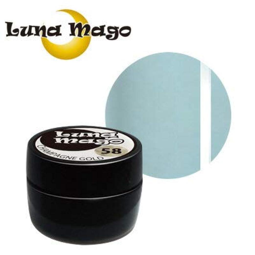 機械的噴出する害Luna Mago カラージェル 5g 042 アクア