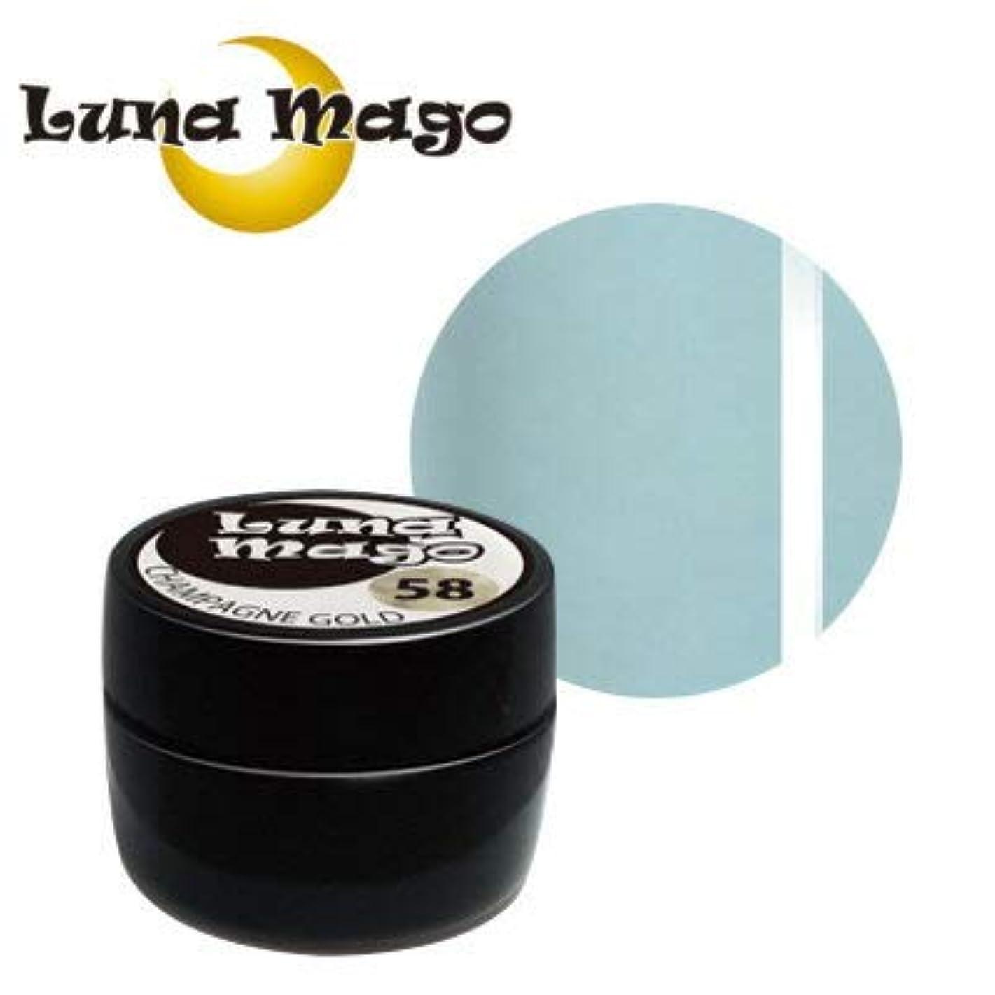 物理的な落ち着く清めるLuna Mago カラージェル 5g 042 アクア