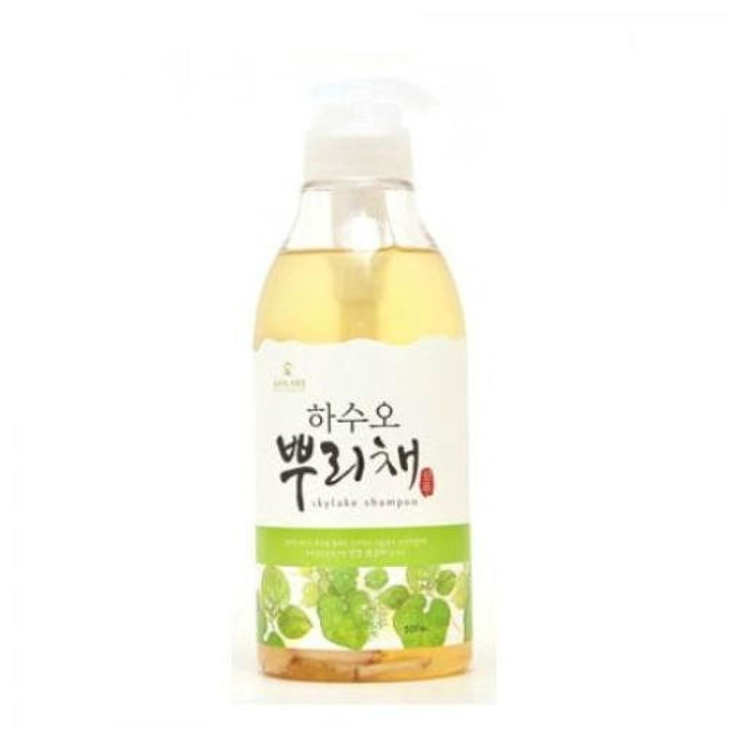 はげ広範囲にひねくれたSkylake Oriental Herb Cool Shampoo (Korean original)