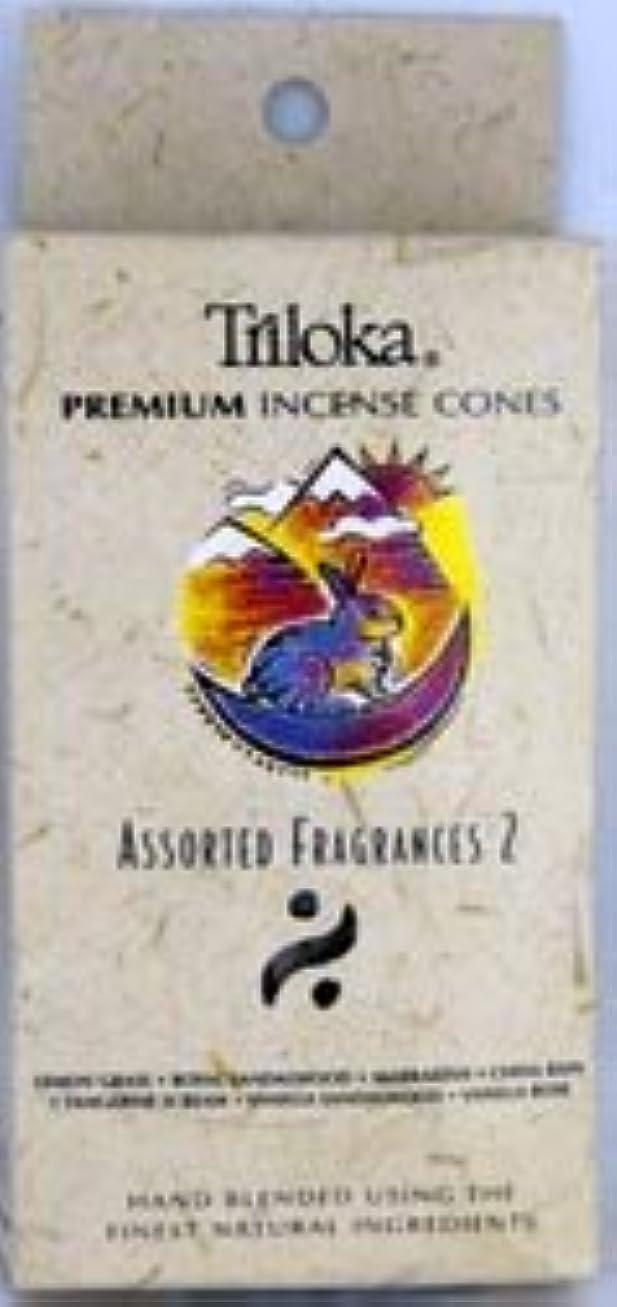 実行する切り下げシリンダーTriloka Incense Cones – Assorted Fragrancesグループ2