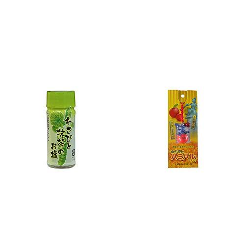 [2点セット] わさびと抹茶のお塩(30g)・信州・飯田のシンボル 時の番人ハミパルくんストラップ