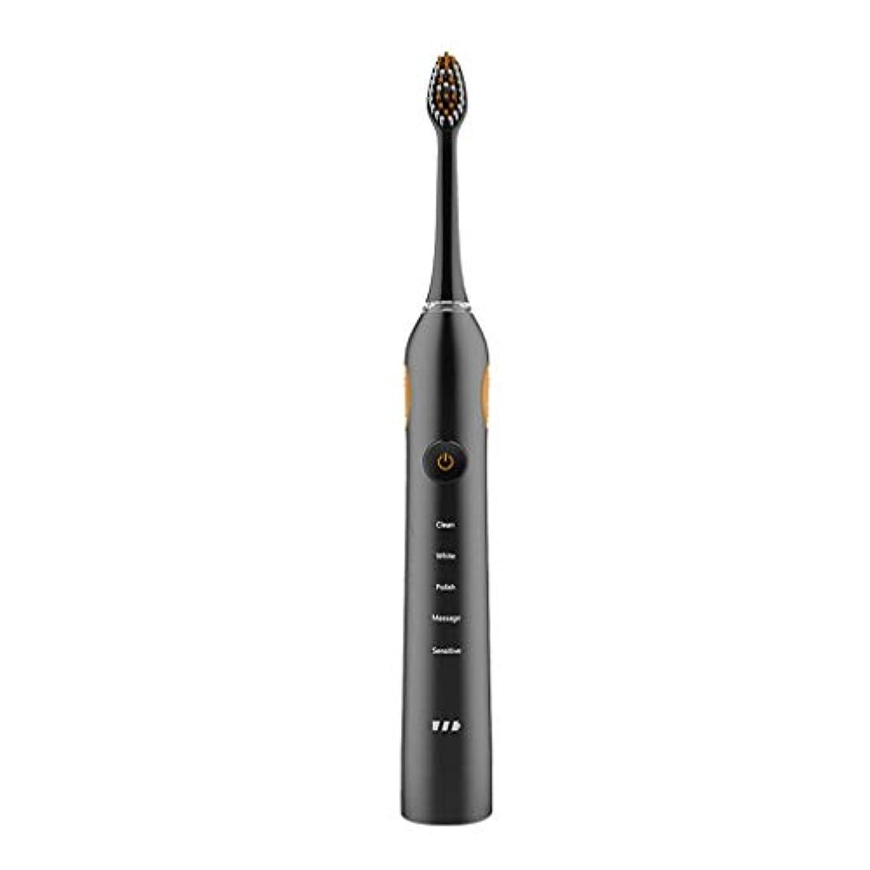 起きて視線細心の音波歯ブラシIPX7防水電動歯ブラシ低ノイズ電動歯ブラシ2交換ヘッド5ブラッシングモード(色:B)