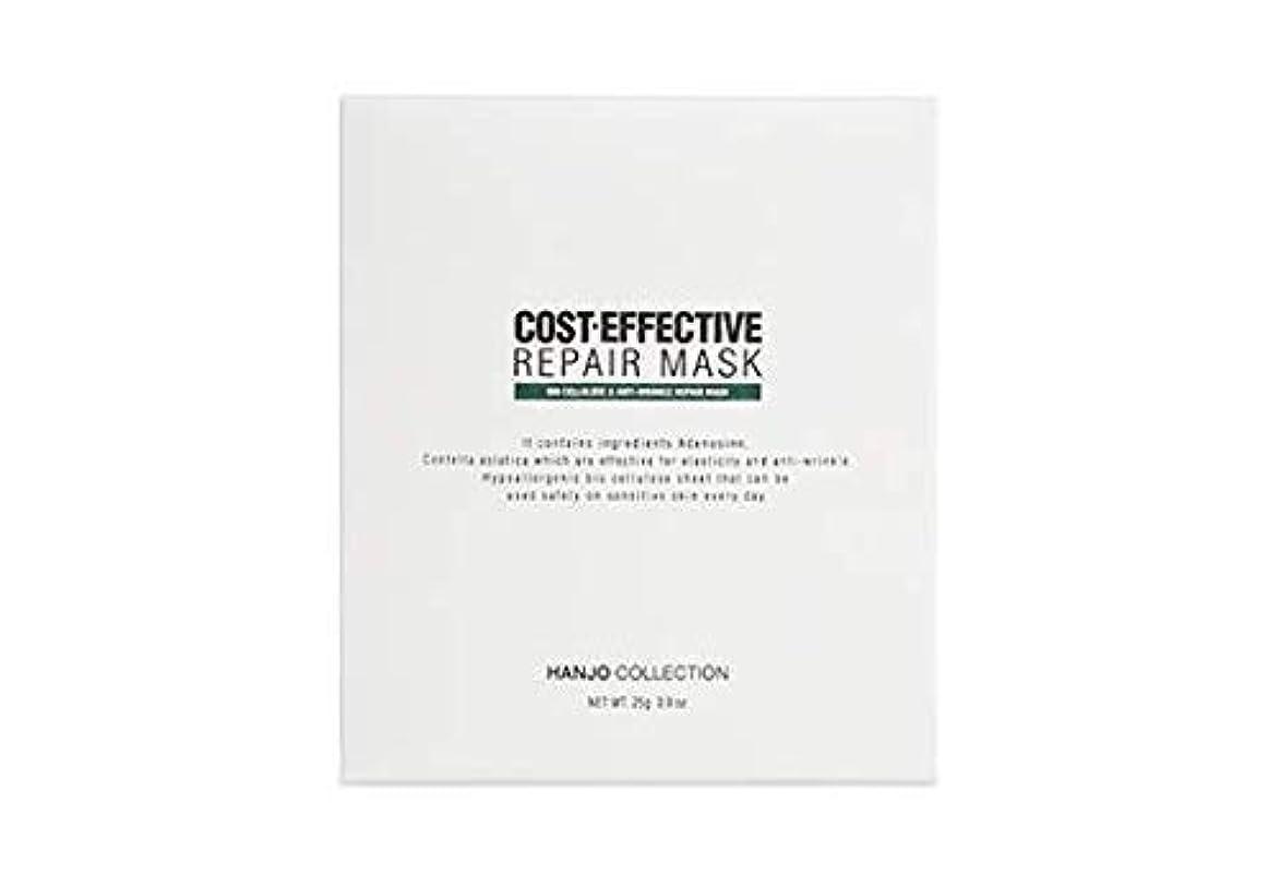 考える微弱山岳COST-EFFECTIVE REPAIR MASK