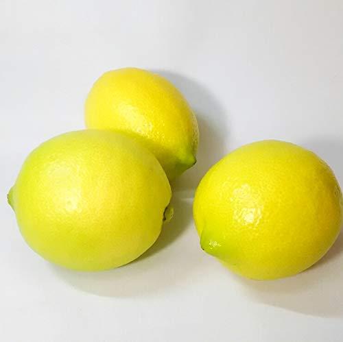 国内産レモン 3kg 防腐剤 防かび剤不使用