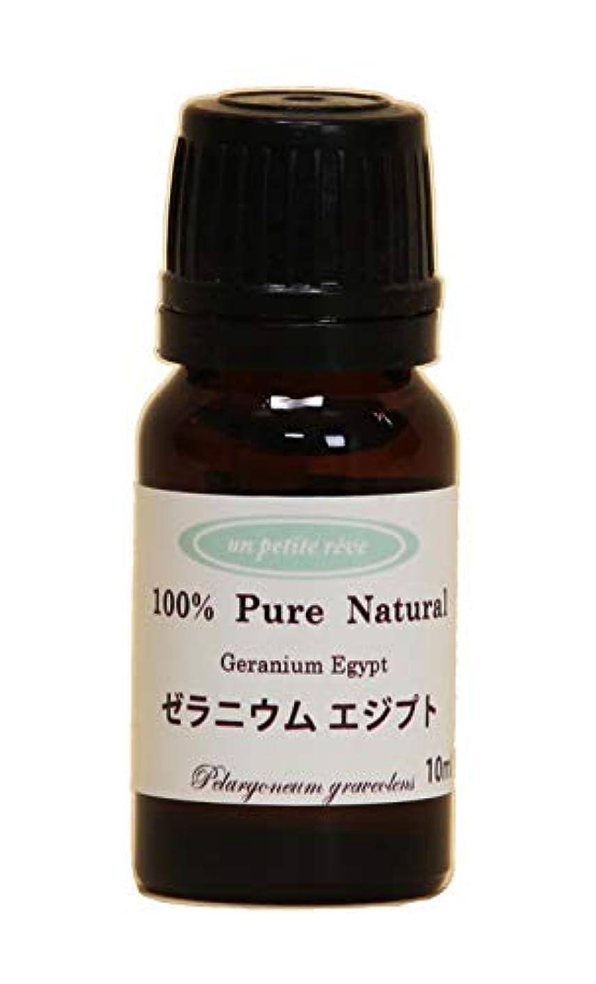 ブラシ吸い込む圧縮するゼラニウムエジプト 10ml 100%天然アロマエッセンシャルオイル(精油)