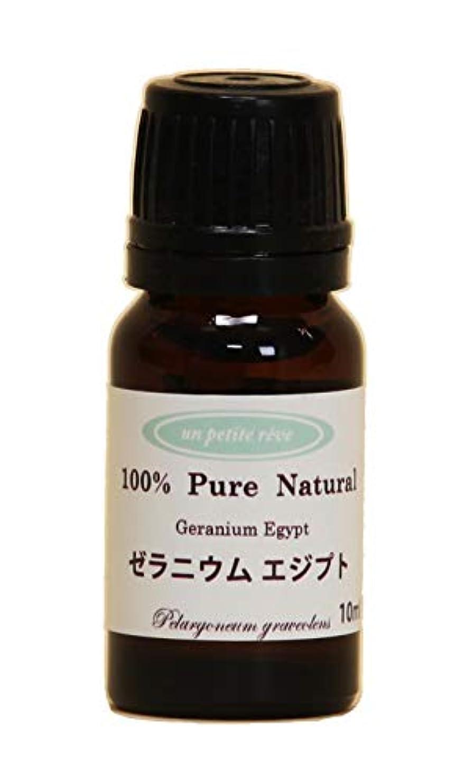 健康的裏切り損なうゼラニウムエジプト 10ml 100%天然アロマエッセンシャルオイル(精油)