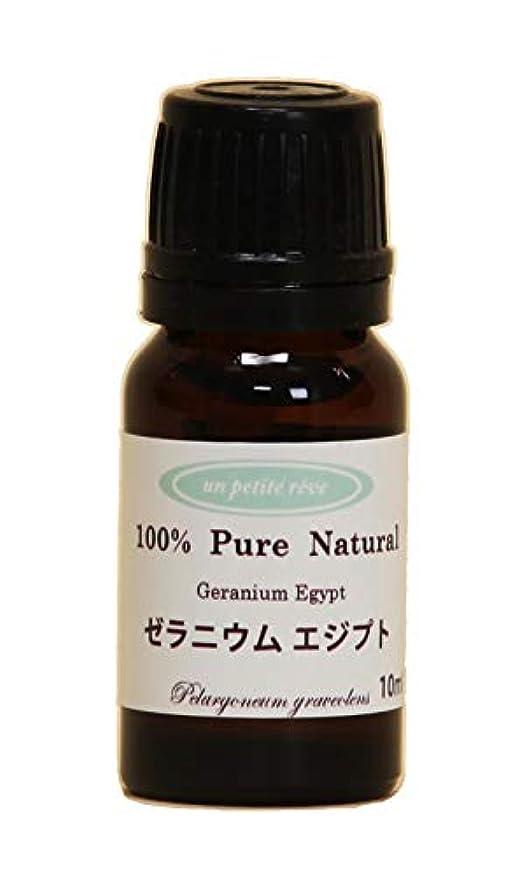 習熟度手数料動詞ゼラニウムエジプト 10ml 100%天然アロマエッセンシャルオイル(精油)