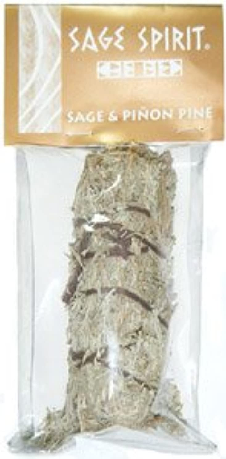 シェルターダニ複雑Desert Sage &松のSmudge Stick、5インチ