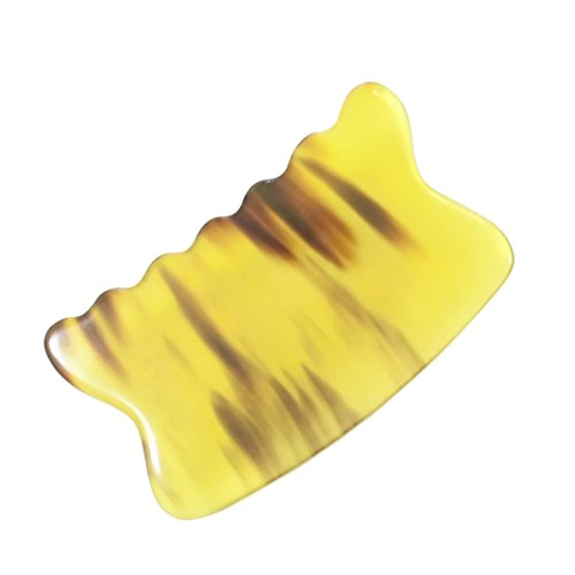 聡明答えベアリングかっさ プレート 希少59 黄水牛角 極美品 曲波型