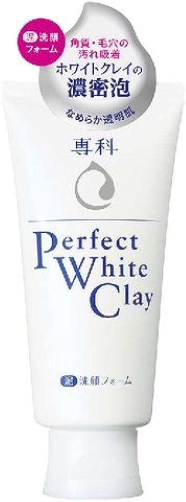 極端なナイロン小売専科 パーフェクト ホワイトクレイn × 48個セット
