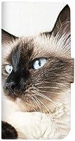 mitas AQUOS ea AQUOS_ea_605SH ケース 手帳型  ネコ 猫 C (253) SC-0226-C/AQUOS_ea_605SH