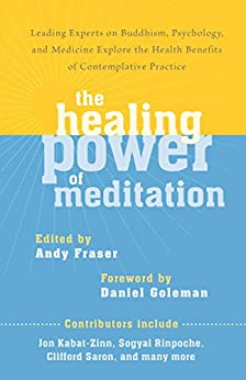 The Healing Power of Meditation: Leading Experts on Buddhism, Psychology, and Medicine Explore the Health Benefit s of Contemplative Practice by [Fraser, Andy]