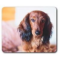 快適なマウスマット - ダックスフントソーセージ犬子犬コンピュータ&ノートパソコン、オフィス、ギフト、ノンスリップベースのため23.5 X 19.6センチメートル(9.3 X 7.7インチ) - RM2729