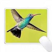 アメリカ、アリゾナ、マデラキャニオン。雄の広範なハチドリが飛んでいる。 PC Mouse Pad パソコン マウスパッド