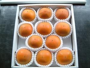 糖度22度 返金保証 和歌山 柿 新秋柿 L 11玉 約2kg 化粧箱 贈答用
