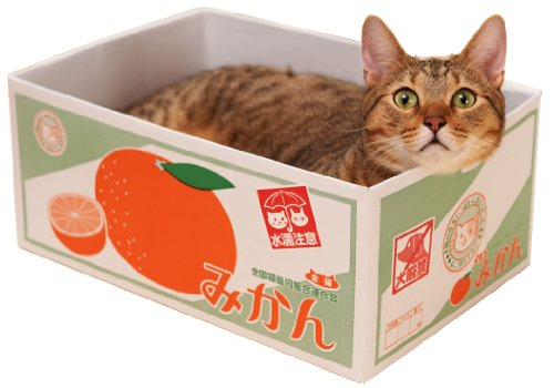 エイムクリエイツ にゃんボール みかん箱  犬猫用品