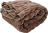 ロマンス小杉 毛布 ブラウン シングル(140×200cm) ウォームサポート ふかふかケット 1-3430-1000-8500