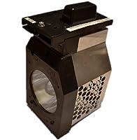 UNISHINE TY-LA2005 Replacement Lamp with Housing for Panasonic TVs [並行輸入品]
