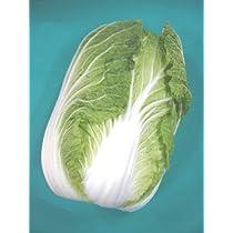『やっぱり国産!』新鮮生野菜セット