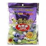 健康プラザパル ブルーベリーキャンディー 80g×2個       JAN:4545063000148