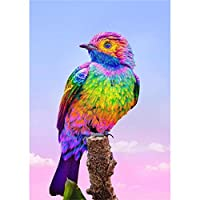 Dabixx 5 Dフルダイヤモンド塗装キット、ダイヤモンド刺繍キット、数字キットによる工芸品&縫製クロスステッチ、壁の装飾 - カラフルな鳥